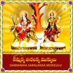 Sammakka Saarakka Mokkulu songs