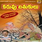 Karuvu Brathukulu songs