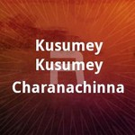 Kusumey Kusumey Charanachinna songs