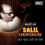 Mone Pade Sei Sab Din - Best Of Salil Chowdhury songs