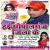 Listen to Mile Aaib Ho from Hai Gopal Ganj Jila Ke