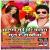 Listen to Din Me Yar Marela from Alga Sute Mor Bhatara Sunre Sakhiya