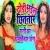 Listen to Dhodi Bhail Chhitnar from Dhodi Bhail Chhitnar