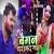Listen to Baigan Baramad Bhail from Baigan Baramad Bhail