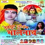 Devghar Aaeib Bholenath songs