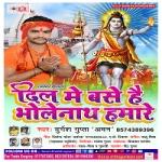 Dil Me Base Hai Bhole Nath Hamare songs