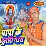 Papa Ke Dulari Gaura songs