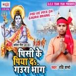 Pisi Ke Piya Da Gaura Bhang songs