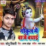 Gokul Me Baaje Badhai songs
