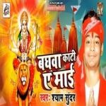 Bhagwa Kati Ae Maiya songs