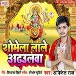 Shobhela Lale Araulwa songs