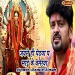 Jawane Hi Pedwa Pa Mai Ke Baserwa songs