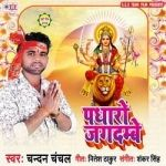 Padharo Jagdambe songs