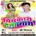 Pihkari Deta Gaari songs