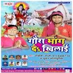 Gaura Bhang Da Khilai songs