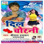 Dil Chorani songs