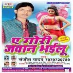 A Gori Jawan Bhailu songs