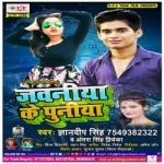 Jawaniya Ke Puniya songs