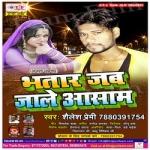 Bhatar Jab Jaale Asam songs