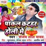 Paakal Katahar Holi Me songs
