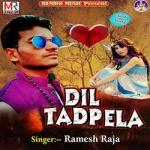 Dil Tadpela songs