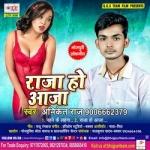 Raja Ho Aaja songs