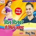 Dil Dilwer Se Mil Jaye Da songs