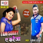 I Am Sorry A Kareja songs