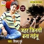 Jahar Jingi Bana Gailu songs