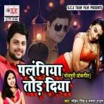Palangiya Tod Diya songs
