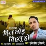 Dil Tod Dihalu Ho songs