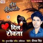 Dil Rowata songs
