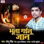 Bhula Gailu Jaan songs