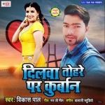 Dilwa Tohare Par Kurban songs