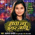 Happy New Year Janu songs