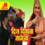 Dil Diwana Mane Na songs