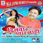 Dilva Ke Pyar Chahi songs