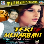 Teri Meharbani songs