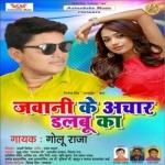 Jawani Ke Achar Dalabu Ka songs