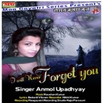 I Will Never Forget You songs