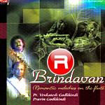 Brindavan songs
