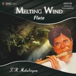 Melting Wind - Flute songs
