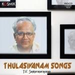 Thulasivanam Songs - TV. Sankaranarayanan songs