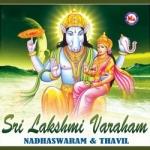 Srilakshmi Varaham songs