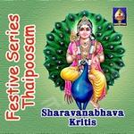 Festive Series - Thaipoosam (Sharavanabhava Kritis) songs