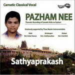 Pazham Nee songs