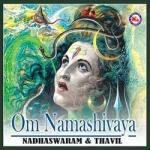 Om Namashivaya (Ambient) songs