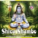 Shiva Shambo (Ambient) songs