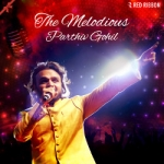The Melodious Parthiv Gohil songs
