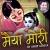 Listen to O Mhari Mata from Maiya Mori By Anup Jalota